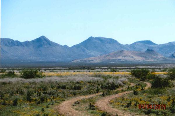 SOLD- Double E Ranch, Cochise County Arizona   Hebbard